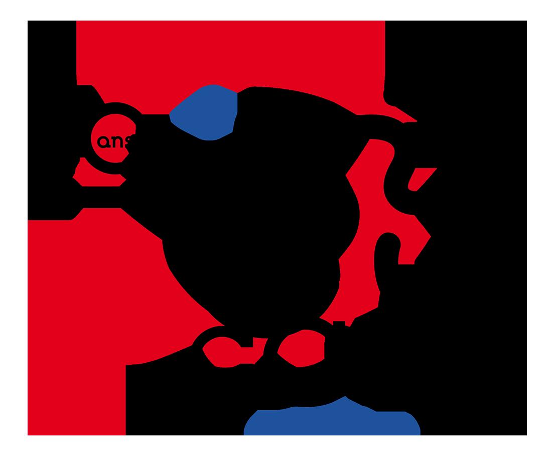 Logo ccfl 40 def